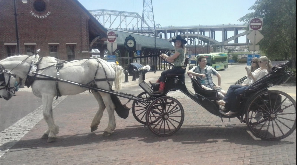 Carriage Rides in Nashville.