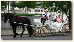 Carriage rides nashville
