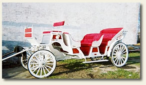 Nashville Carriage Rides.