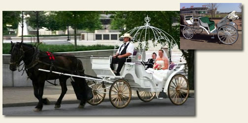carriage ride nashville