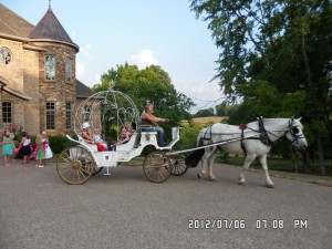 Horse Drawn Carriage Cinderella Carriage Birthday Party !