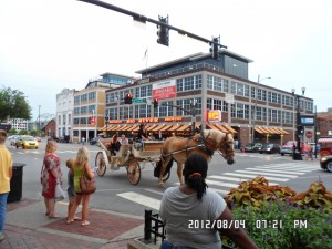 Horse Drawn Carriage Ride Nashville TN !