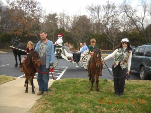 Pony Party/Horse Drawn Carriage !