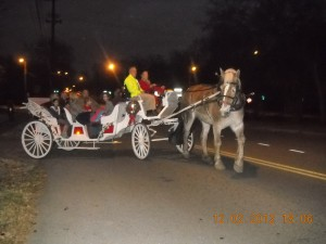 Horse Drawn Carriage Tours Nashville T.N !