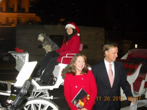 Horse Drawn Carriage Rides Nashville TN !