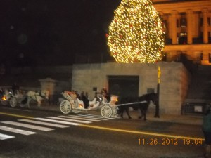 Horse Deawn Carriage Rides Nashville TN !