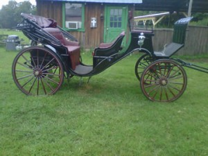 Sugar Creek Carriages has serviced more weddings than anyone in the area. From Weddings, anniversaries, proposals, parties, fairs and festivals, our horse-drawn carriage rides can make the ordinary………extraordinary. Sugar Creek Carriages is a full service horse and carriage company.  Serving all of TN, Nashville, TN.