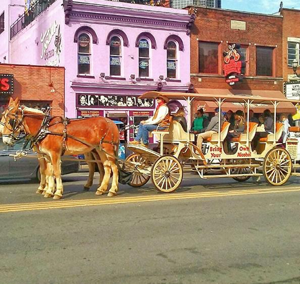 Trottin Carriage Tour Nashville